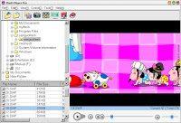 flashplayerprov5-3withkey-9507345