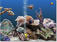 serenescreenmarineaquarium3-v3-2-6025inclkeygen-eat-3117086