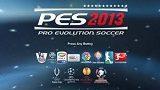 pesedit2013patch3-8-7047214