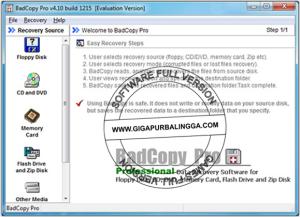badcopy-pro-v4-1-1215-full-serial-number-for-activation1-300x217-1401948