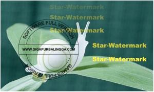 star-watermark-ultimate-v1-1-3-full-serial2-300x180-6733877