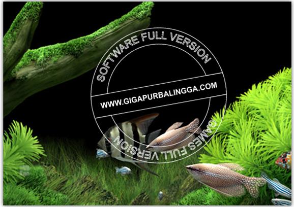 dream-aquarium-screensaver-v1-27-full-version1-4570556