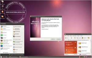 skinpack-ubuntu-2-300x188-1181585