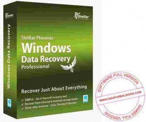 stellar-phoenix-windows-data-recovery-full-300x250-2863538