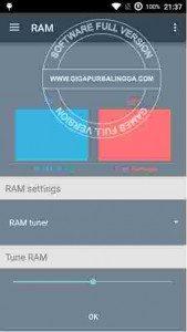 ram-manager-pro-apk1-169x300-1878064