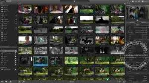 sony-catalyst-production-suite-full3-300x169-6574539