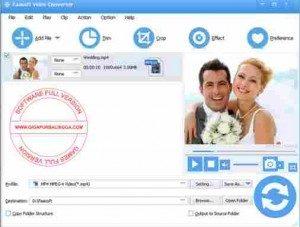 faasoft-video-converter-full1-300x227-6385261