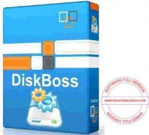 diskboss-ultimate-full-300x272-6545971