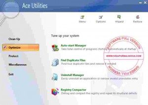 ace-utilities-full1-300x213-5244303
