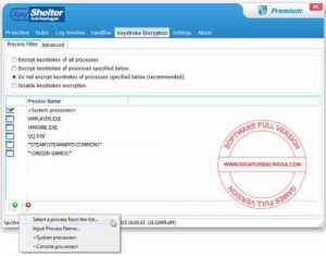 spyshelter-premium-full-serial1-300x235-2952288