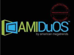amiduos-full-300x225-9014996