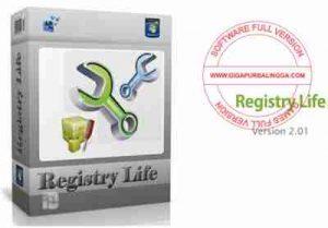 registry-life-terbaru-300x209-3136589