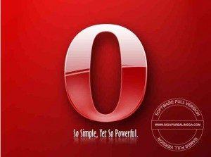 opera-29-0-1795-60-final-offline-installer-300x223-9446748