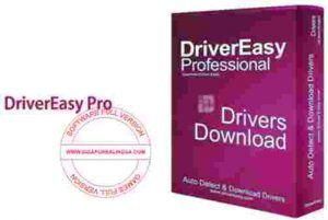 drivereasy-professional-300x201-2506546