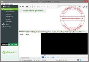 utorrent-pro-v3-4-2-build-38642-beta-multilingual-full-crack-300x209-9548483