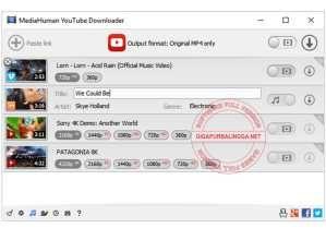 mediahuman-youtube-downloader-full-4541884