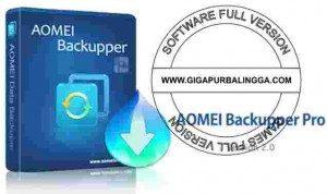 aomei-backupper-professional-v3-0-0-full-version-300x178-8474161