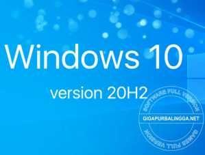 windows-10-20h2-iso-5948830