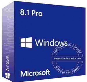windows-8-1-professional2-300x283-4555646